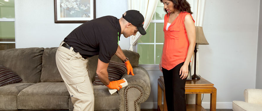 Houghton Lake, MI carpet upholstery cleaning